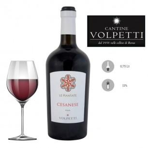 Vino rosso Cesanese