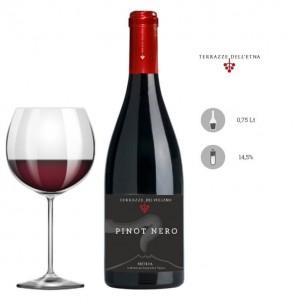 IGT Sicilia Pinot Nero 2011 - Terrazze dell'Etna