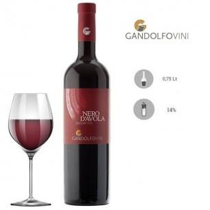 Nero d'Avola Sicilia DOC 2019 - GandolfoVini