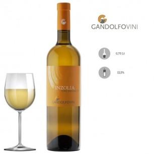 Inzolia Terre Siciliane IGP 2019 - GandolfoVini
