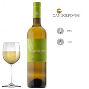 Catarratto Terre Siciliane IGP 2019 - GandolfoVini